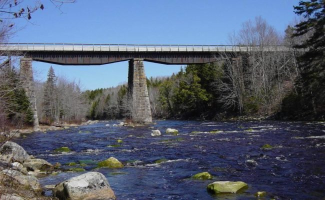 Gold River Bridge, with deck and handrail by Military Engineers -8